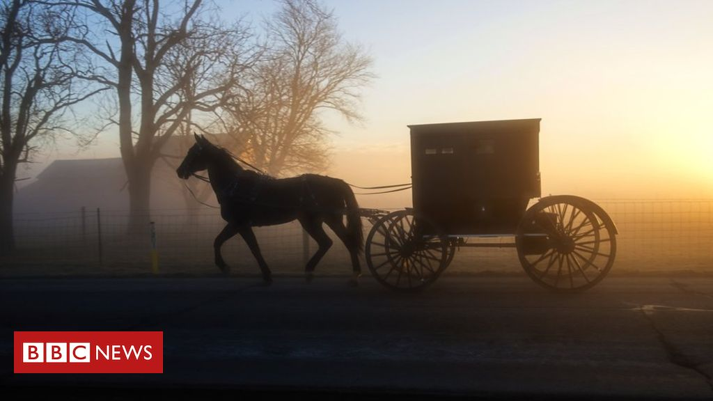 Four Amish children killed in horse-drawn buggy accident